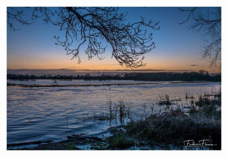Lac de Grand-Lieu 1