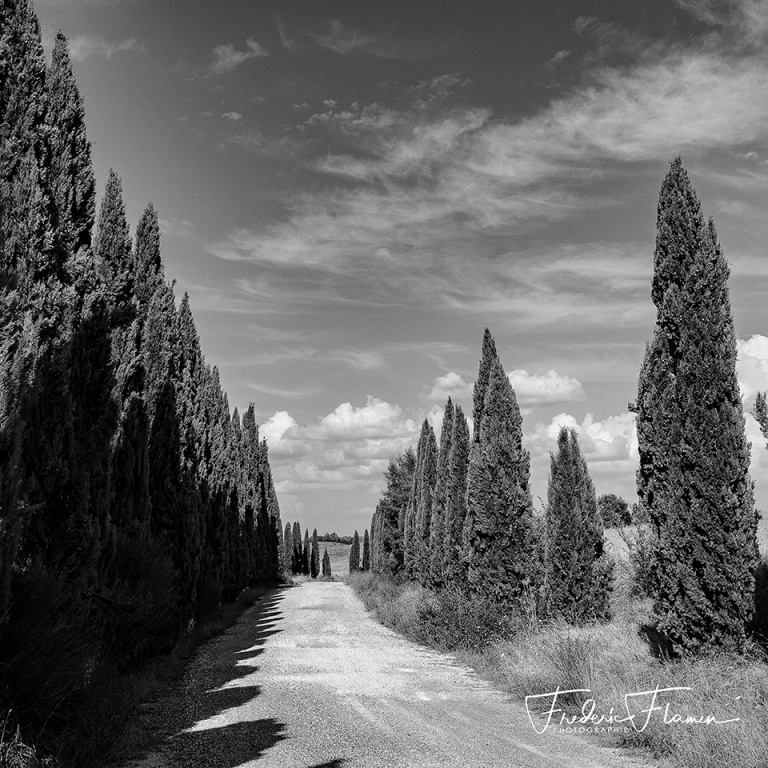 Toscane_DSF6745