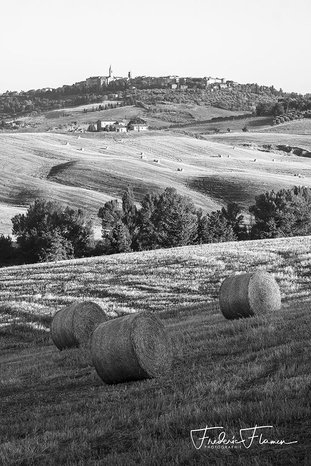 Toscane_DSF6825