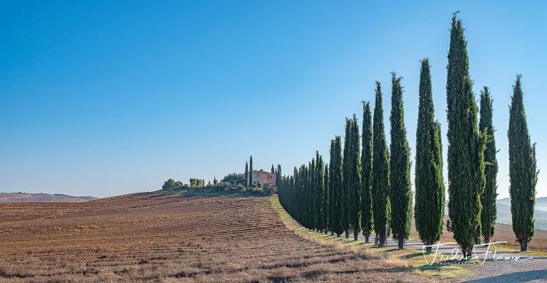 Toscane_DSF6837