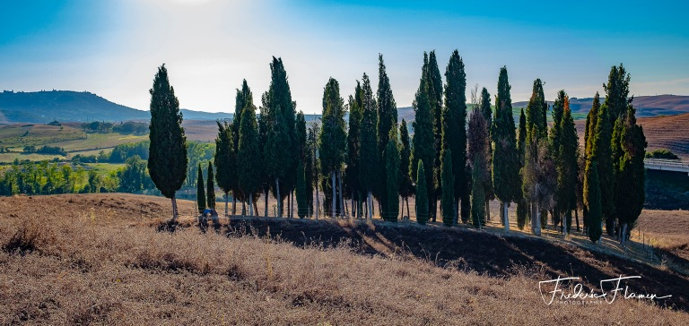 Toscane_DSF6881