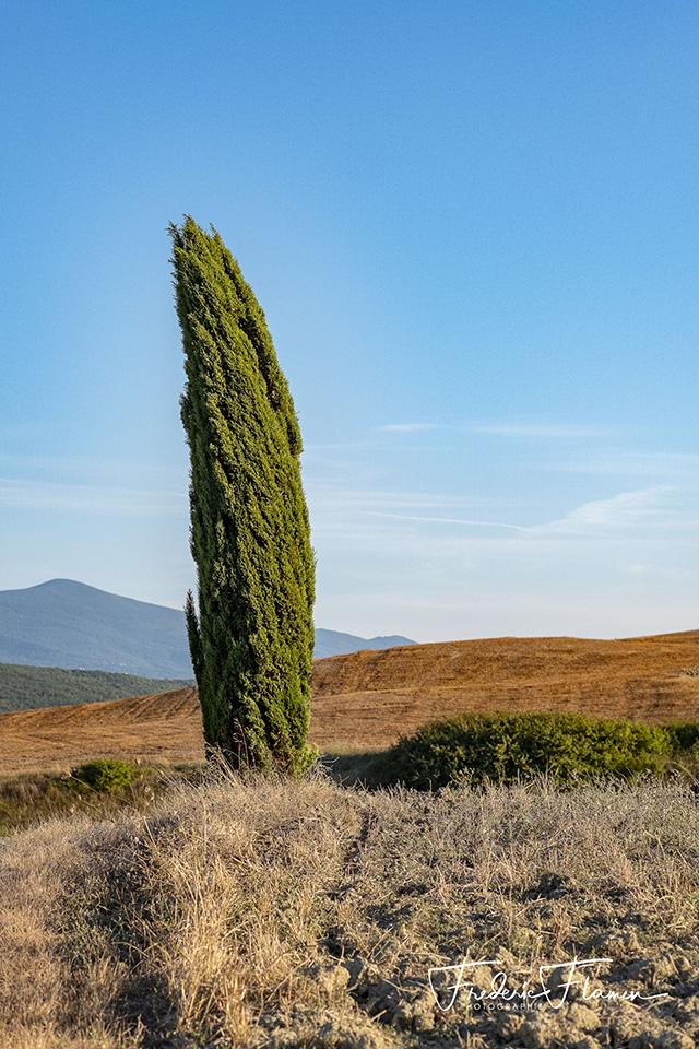 Toscane_DSF6899