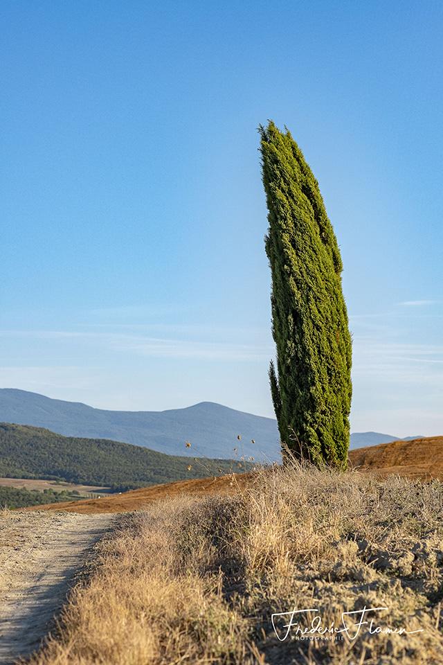 Toscane_DSF6901