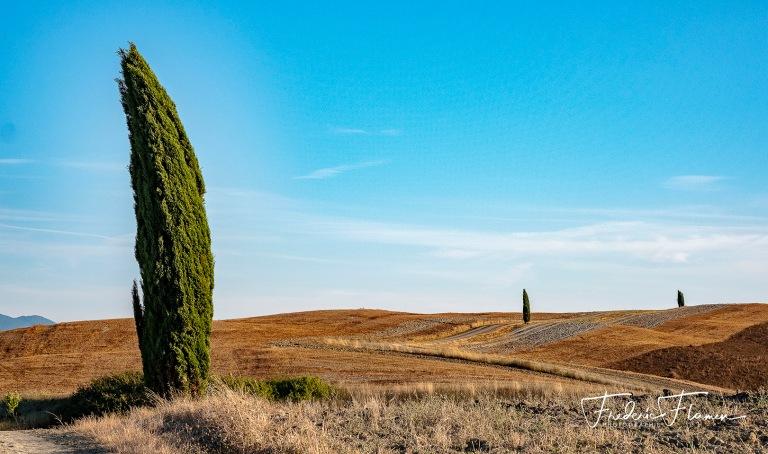 Toscane_DSF6910