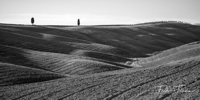 Toscane_DSF6918